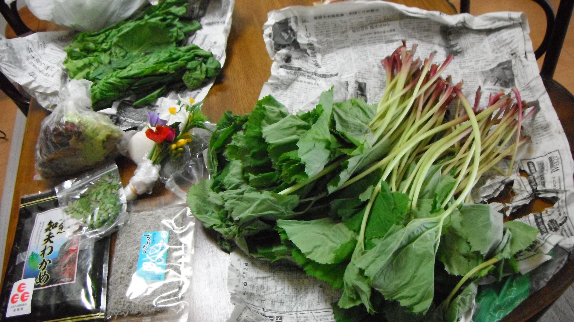 故郷から届いた野菜